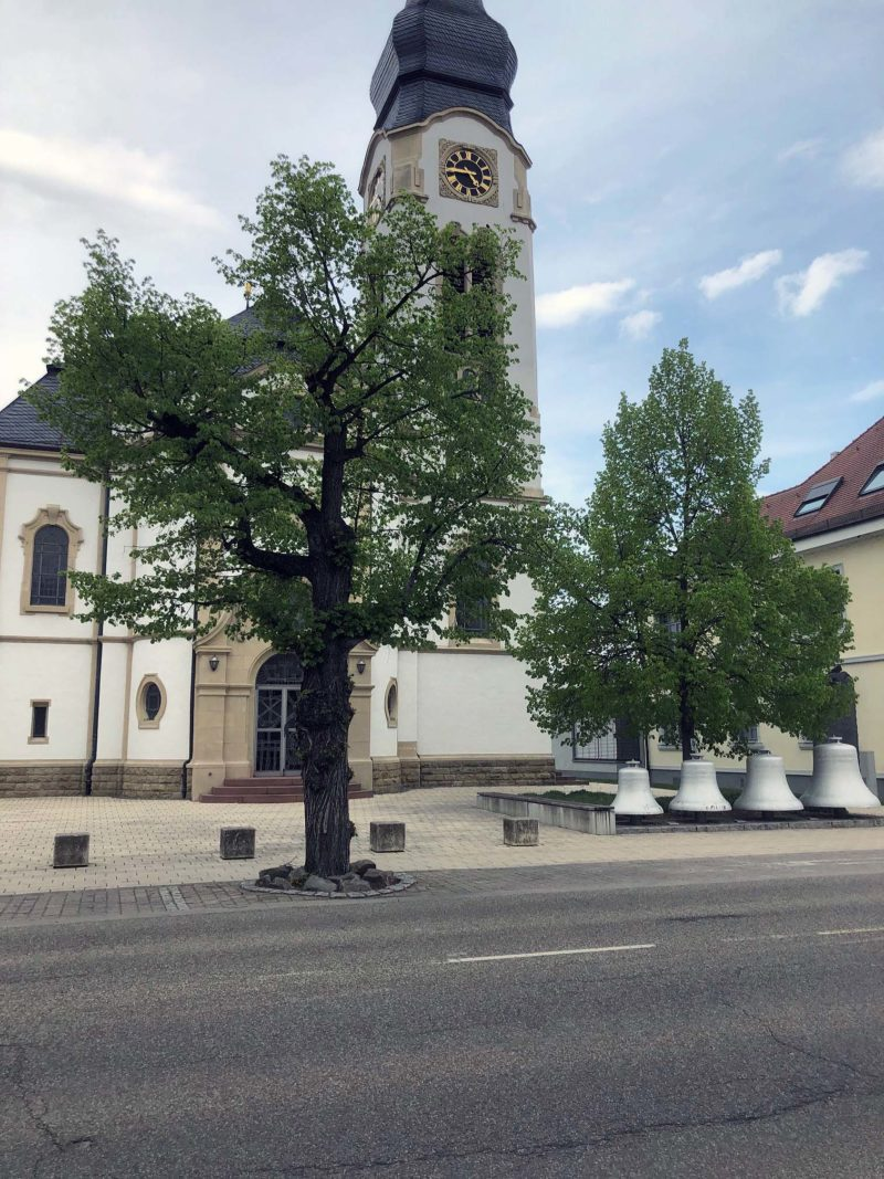Bäume vor der Kirche 28-04-2021
